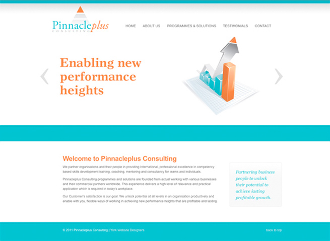 The website designed for Pinnacleplus Consulting