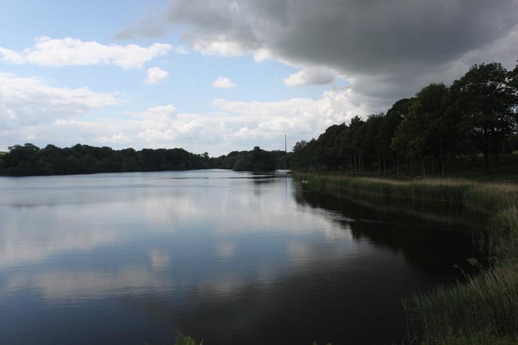YSP_lake